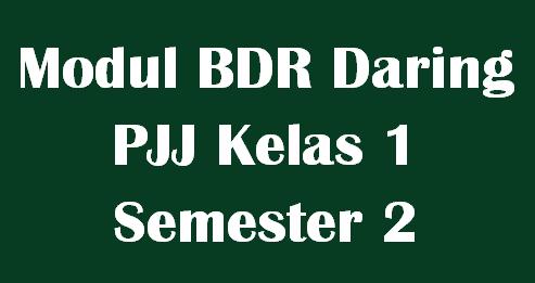 Modul BDR Daring PJJ Kelas 1 Semester 2 Tema 5,6,7 dan 8