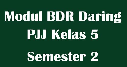 Modul BDR Daring PJJ Kelas 5 Semester 2 Tema 6,7,8 dan 9