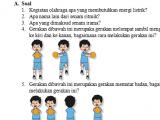 Soal PH/UH Kelas 2 Tema 6