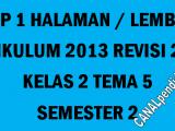RPP Kelas 2 Tema 5 K13 Revisi 2020 Format 1 Lembar